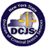 Division of Criminal Justice Services